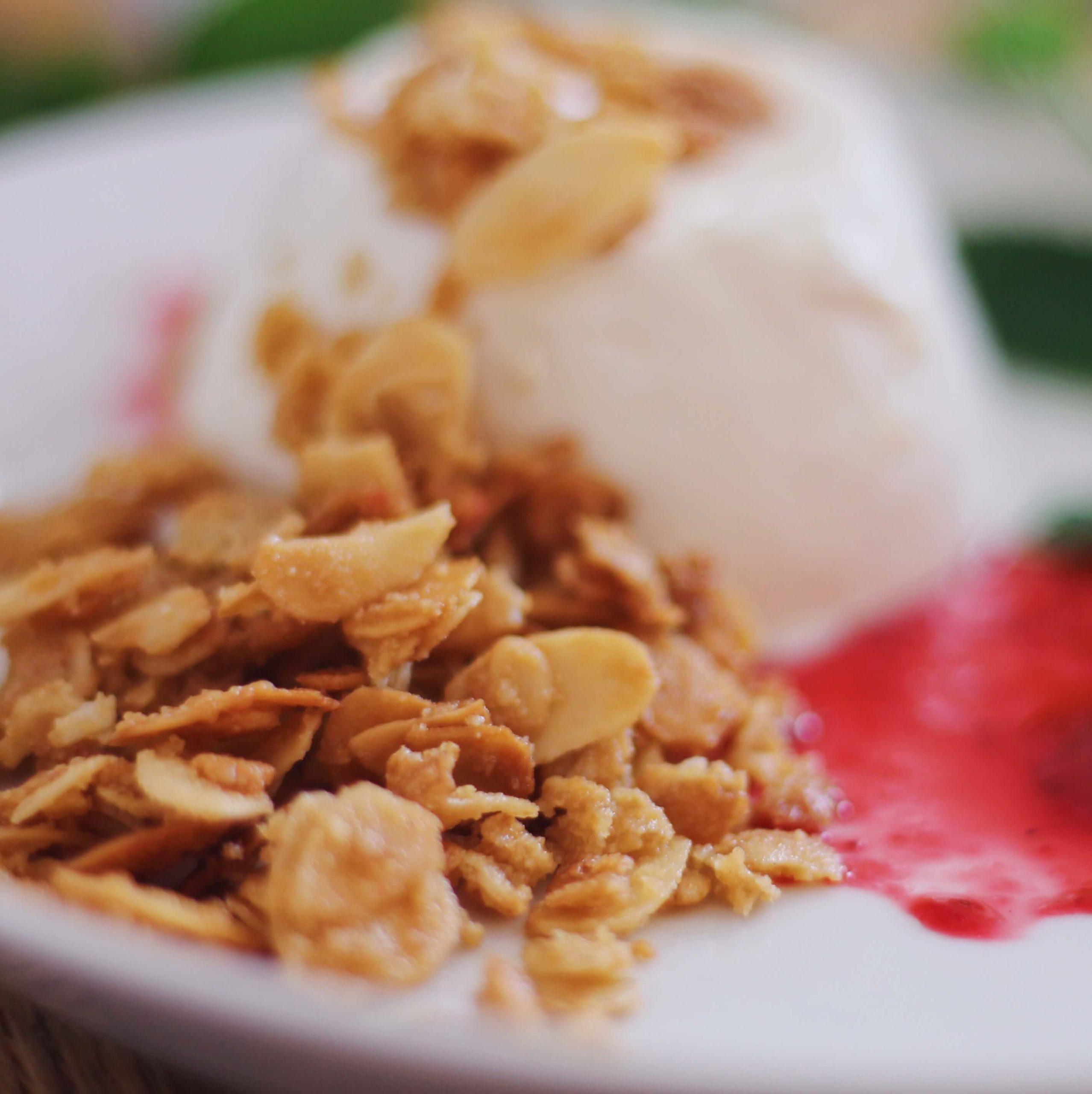 FODMAP jogurttipannacotta, puolukkamelba, kaura-mantelitosca